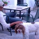 Kuki's Rasta Dog