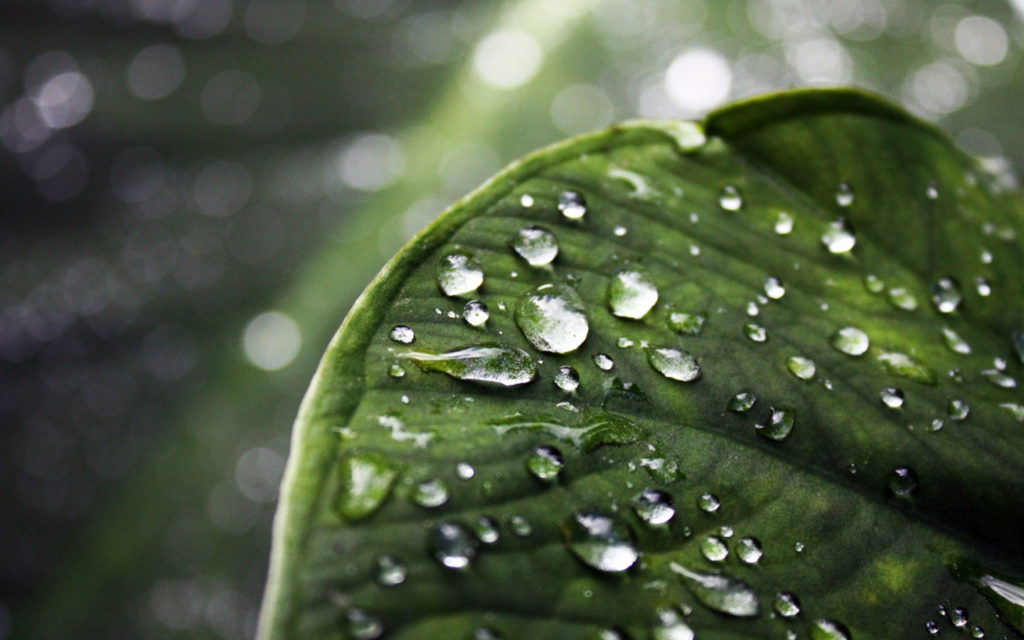 rain-hd-photos-hd